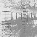 AI forest Dielmo